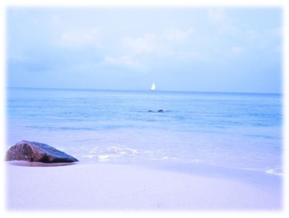 beachy10_morgufile_photoshop_brukes