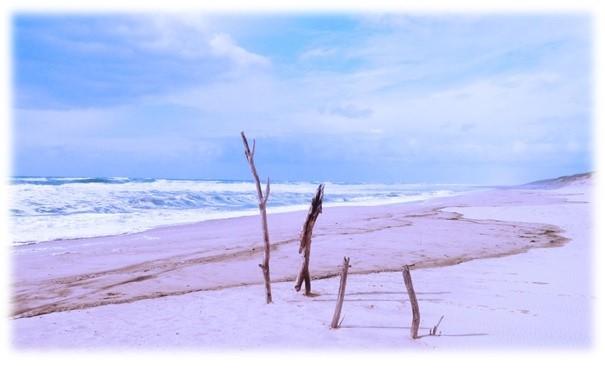 beachy1_morgufile_photoshop_brukes