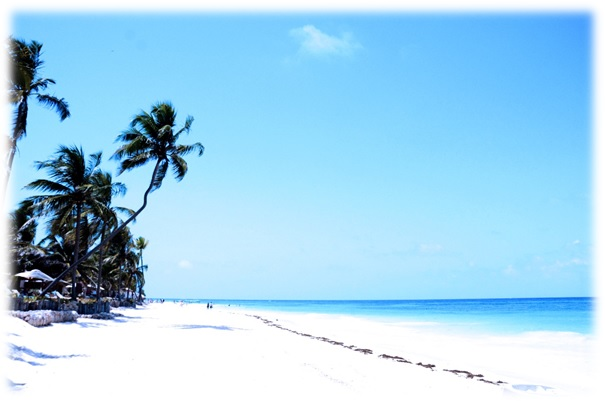 Bilde_BeachBum3