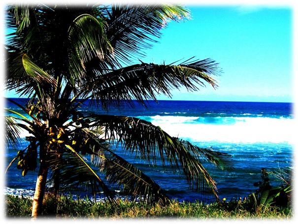 Bilde8_secret_beach